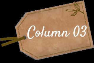 Column 01